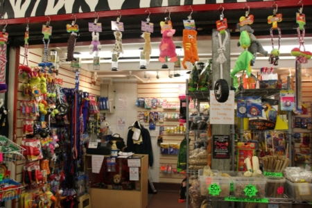 Wagsters Pet Supplies image